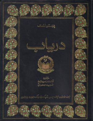 daryab pashto dictionary pdf free download